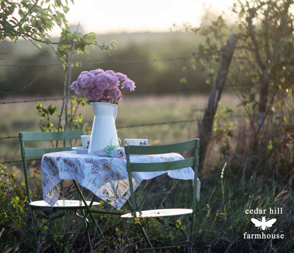 table and chairs at sunset in field