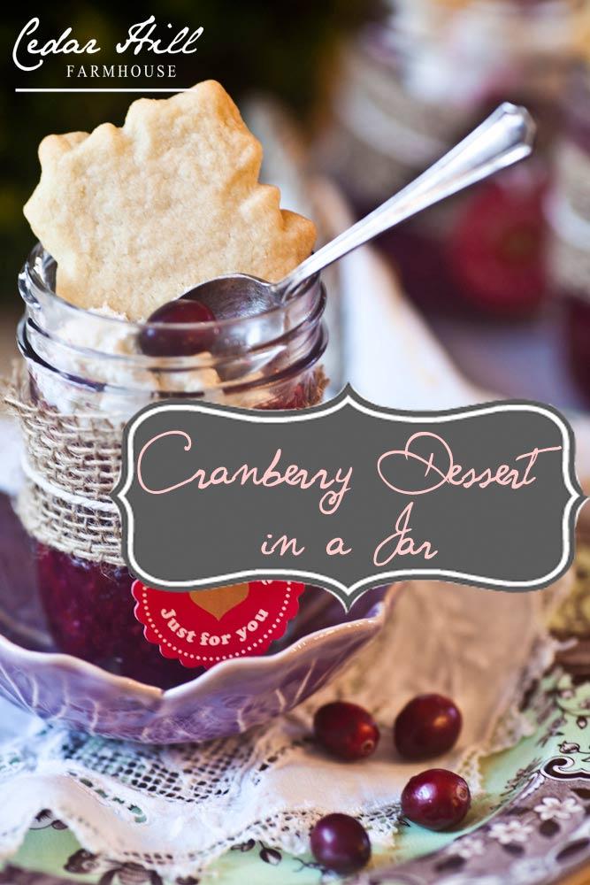 cranberry-dessert