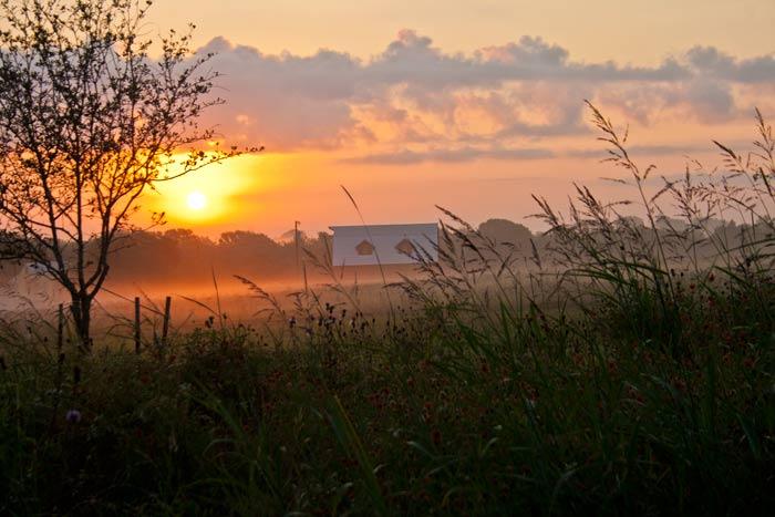 sunrise-at-cedar-hill