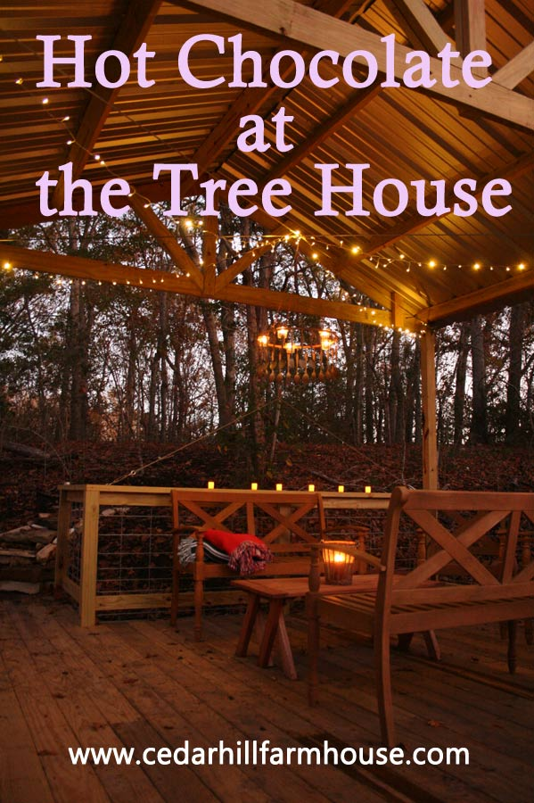 tree-house-twinkle-lights