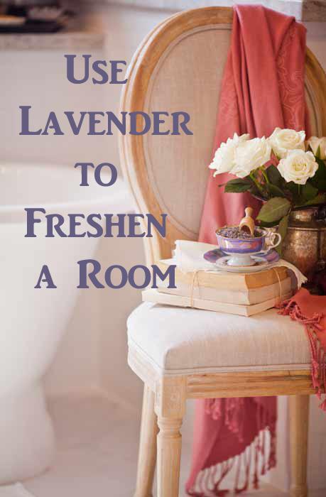lavender pin pic