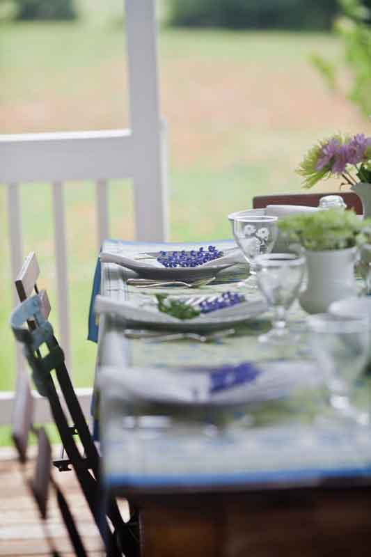 bluebonnets-table