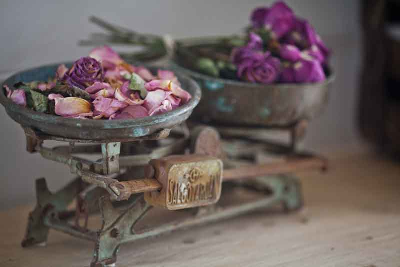 dried-roses-in-vintage-scale