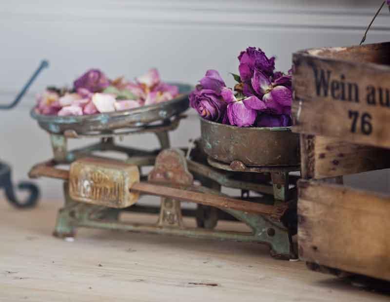 roses-in-antique-scale