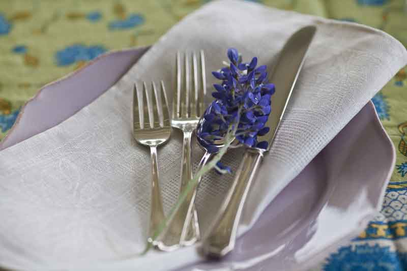 silverware-and-bluebonnets