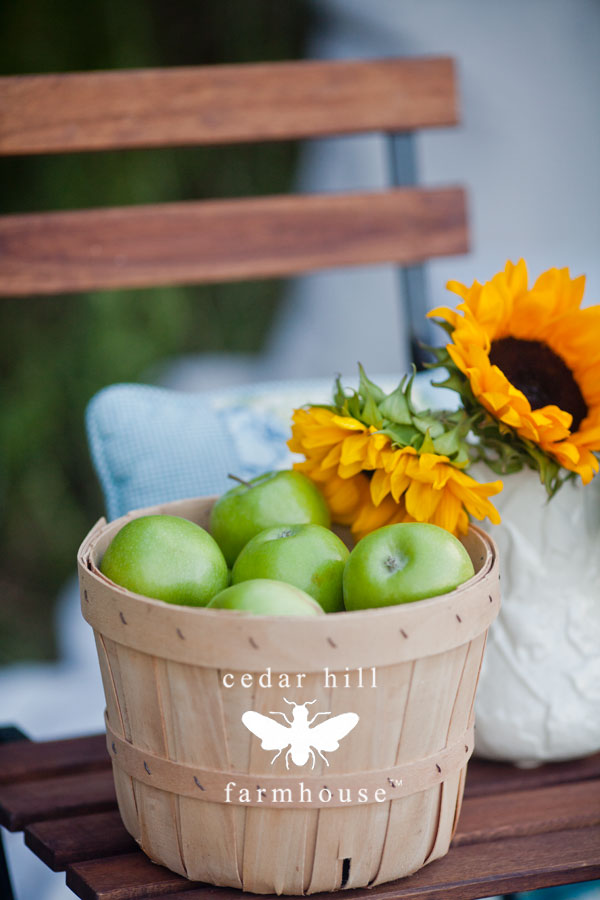 apples-in-chair