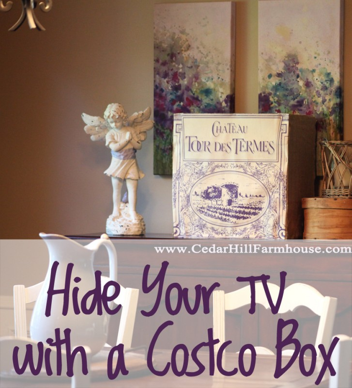 costco box tv cover
