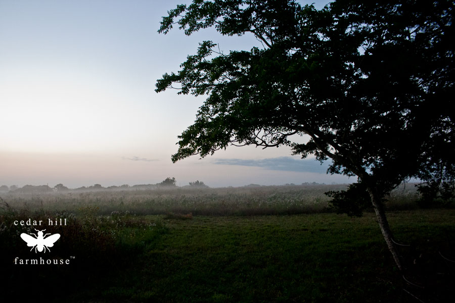 farm-sunrise