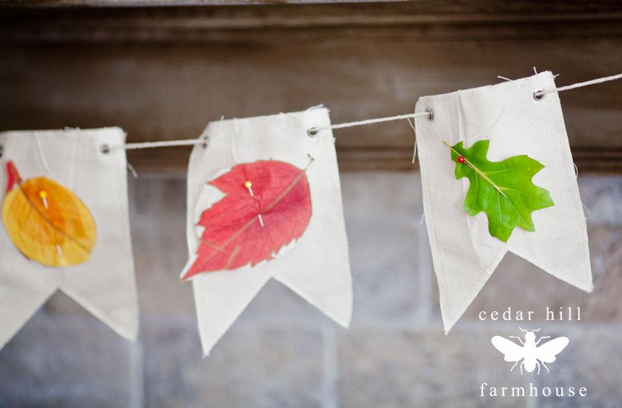 leaf-bunting