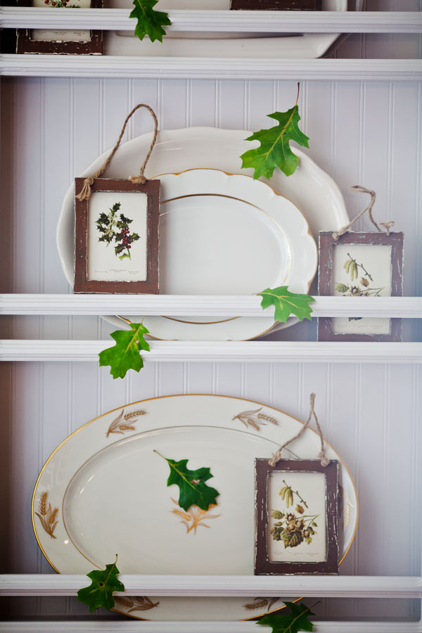 plates-and-leaves