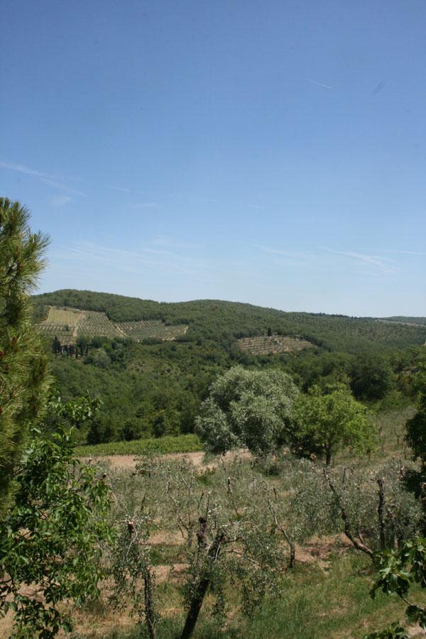 tuscany-from-my-window