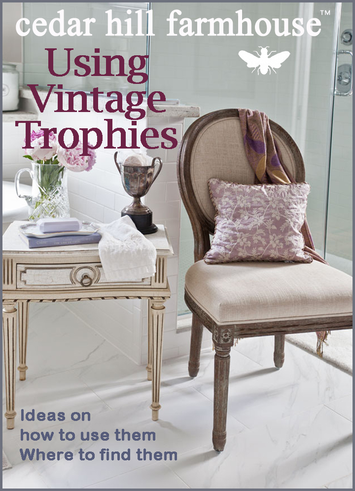 vintage trophy magazine cover
