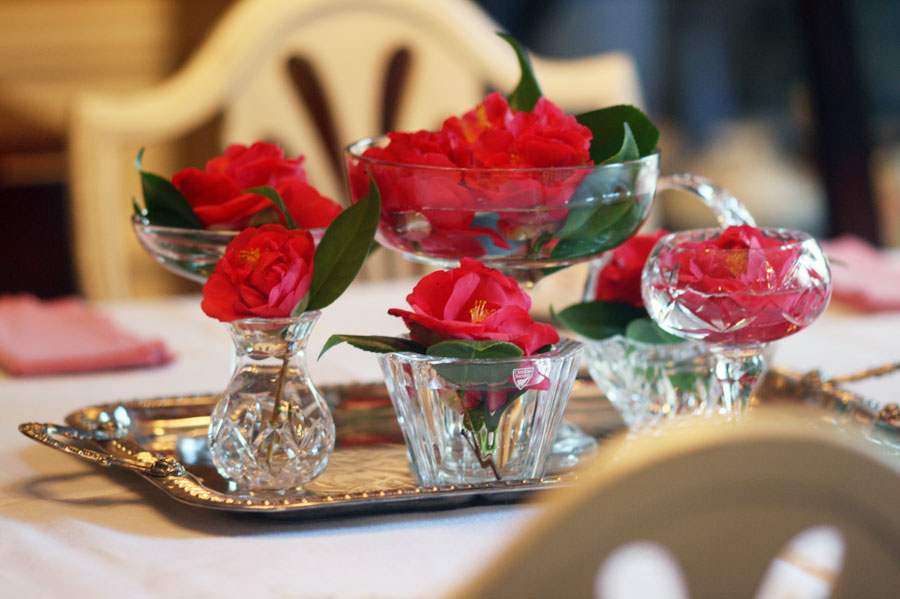 camellias-on-a-silver-tray