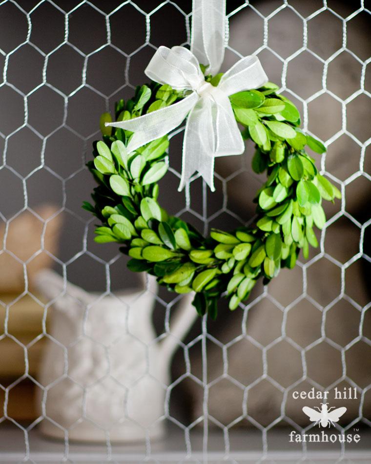 mini-boxwood-wreath