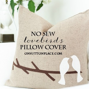 no sew lovebirds pillow cover diy