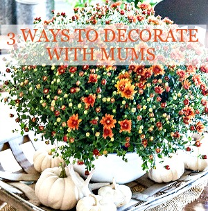 1fall-home-tour-2016-part-2-mums-and-white-pumpkins-stonegableblog-2-2