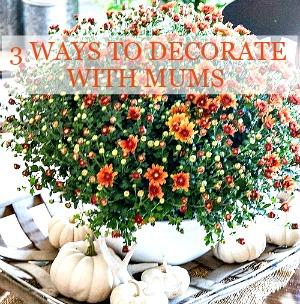 1fall-home-tour-2016-part-2-mums-and-white-pumpkins-stonegableblog-2-2