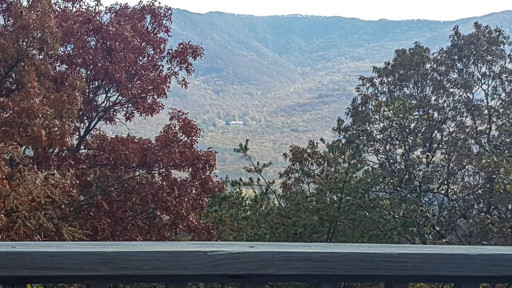 cedar-hill-farmhouse-thanksgiving-6