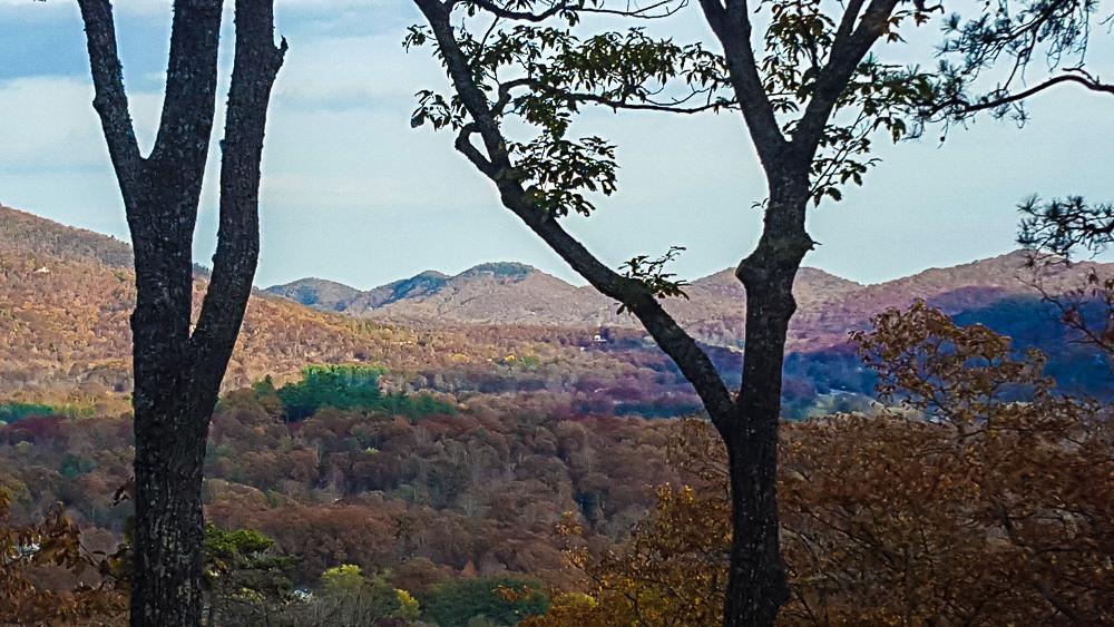 cedar-hill-farmhouse-thanksgiving-7