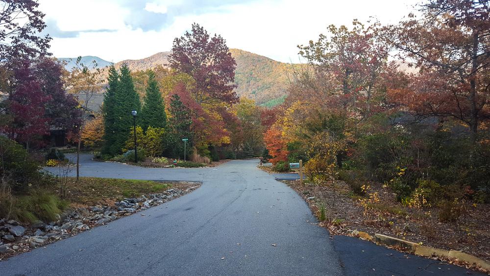 cedar-hill-farmhouse-thanksgiving-8