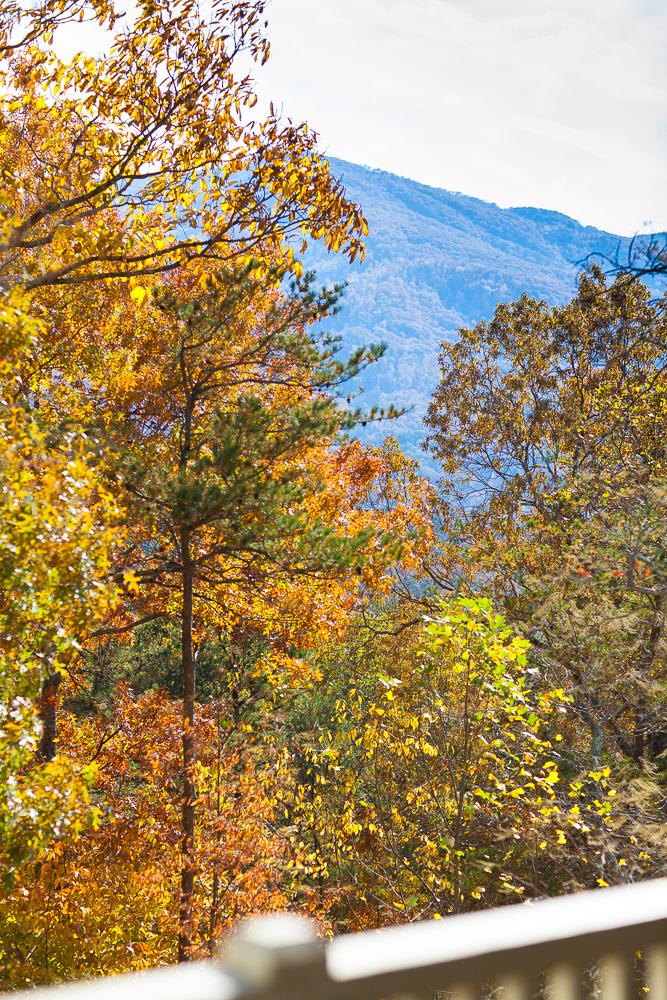 thanksgiving-cedar-hill-farmhouse-mountains-6-copy