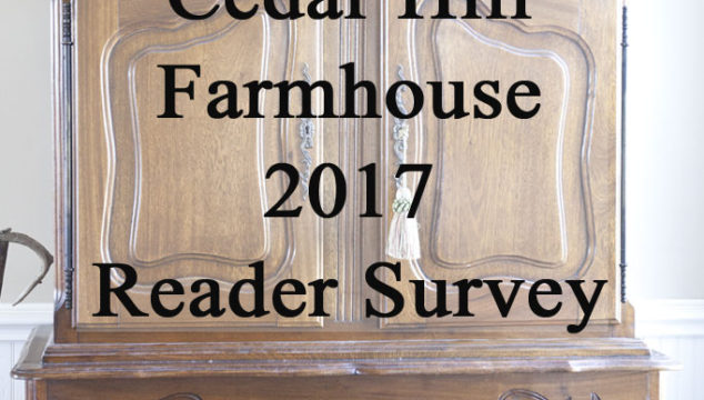 Reader Survey Tell Me What You Want!