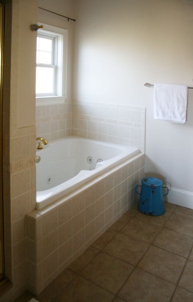Spectacular bathroom remodel tub before