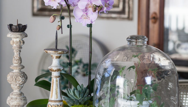 Transitioning from Winter to Spring Decor